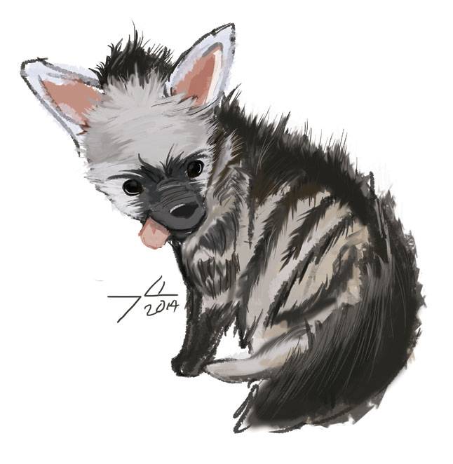 aardwolf-01.jpg / Yo Francisco Martinez